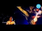 Amma Donga - Tanikella Bharani, Brahmanandam comedy Scene