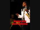 Leather Strap Riddim Mix (ZJ Ice Record) (November 2012).wmv